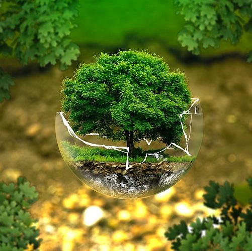 Naturschutz