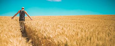 Zusammenarbeit Grundstücksbesitzer und Landwirte